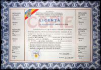 licenta-copie